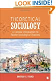 Theoretical Sociology: A Concise Introduction to Twelve Sociological Theories
