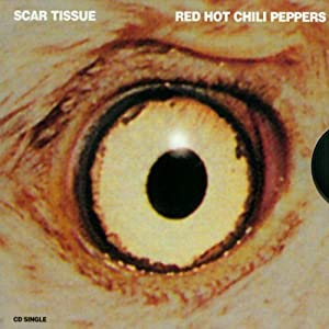 red hot chili peppers scar tissue amazoncom music