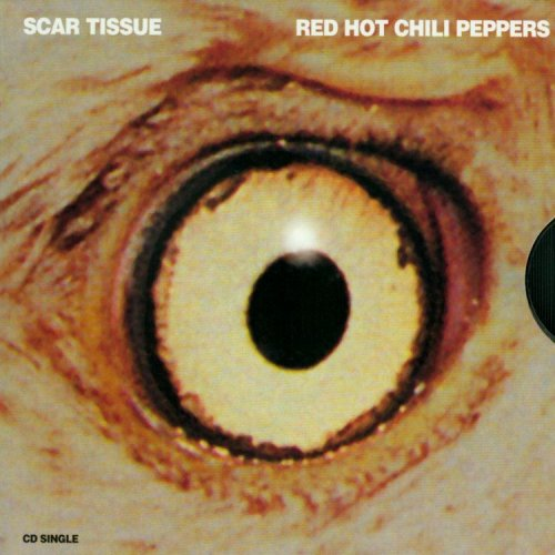 Red Hot Chili Peppers - Scar Tissue (Lyrics) - Zortam Music