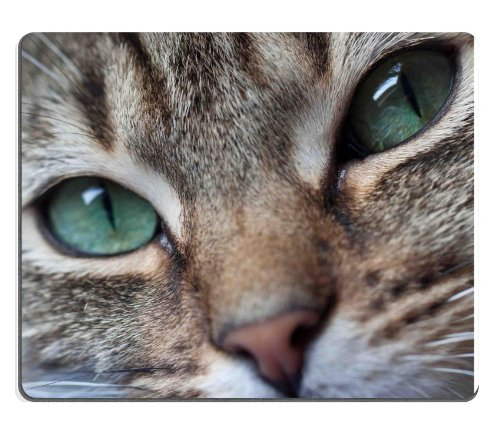 Close Up Cat'S Green Eyes Mouse Pads Customized Made To Order Support Ready 9 7/8 Inch (250Mm) X 7 7/8 Inch (200Mm) X 1/16 Inch (2Mm) High Quality Eco Friendly Cloth With Neoprene Rubber Msd Mouse Pad Desktop Mousepad Laptop Mousepads Comfortable Computer