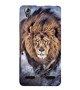 LION A POWERFULL CREATION OF NATURE 3D Hard Polycarbonate Designer Back Case Cover for Lenovo A6000