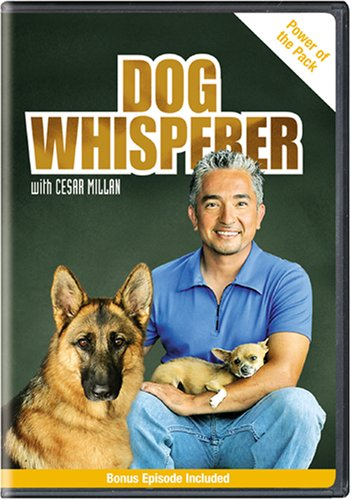 Dog Whisperer With Cesar Millan: Power of the Pack [DVD] [Region 1] [US Import] [NTSC]