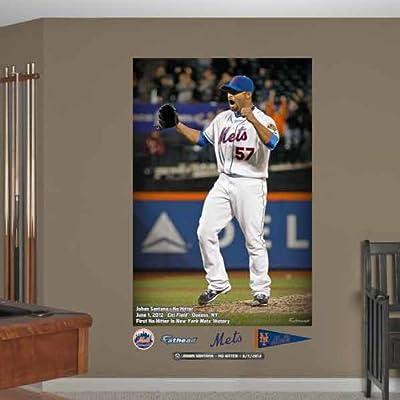 MLB New York Mets Johan Santana No-Hitter Mural Wall Graphics