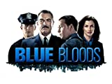 Blue Bloods: Little Fish