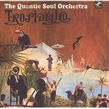 Tropidelico ~ Quantic Soul Orchestra