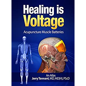 Healing is Voltage: Acupuncture Muscle Batteries: An Atlas