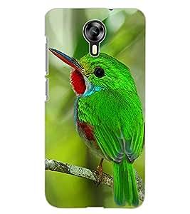 ColourCraft Lovely Bird Design Back Case Cover for MICROMAX CANVAS XPRESS 2 E313