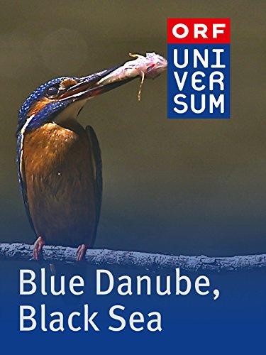 Blue Danube, Black Sea