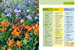 Image de Gartenjahr für Einsteiger: Schritt für Schritt zum grünen Paradies