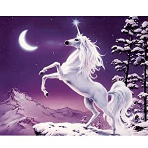 hobby cross stitch kit the moonlight unicon f12 amazon