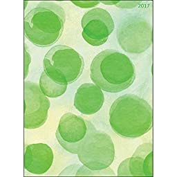 TF Publishing 16-4240 2016 Polka Dots Simplicity 18 Month Planner