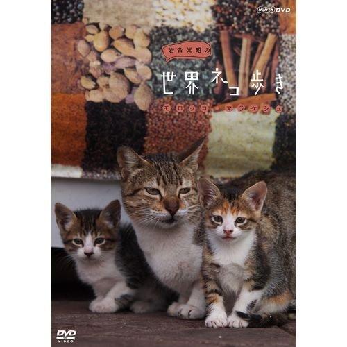 岩合光昭の世界ネコ歩き モロッコ・マラケシュ DVD【NHKスクエア限定商品】