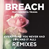 Everything You Never Had (We Had It All) feat. Andreya Triana (Extended Dub Remix)