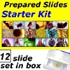 MC4551: Prepared Slides - Starter Kit (Set of 12)