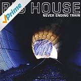 Never Ending Train