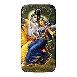 Delighted Radha Krishna Multicolor Back Case Cover for Galaxy Mega 6.3