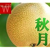 ≪PR 産地直送≫\千葉県白井 梨 /品種指定有 【秋月】 5kg5L~4L