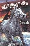 Gunsmoke (Horses of Half Moon Ranch)