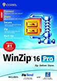 WinZip 16 Pro [Download]