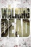THE WALKING DEAD/ウォーキング・デッド(Flying Circus)《PPC-086)シネマポスター☆インテリアグッズ(CINEMAPOSTER)通販☆ / PYRAMID POSTERS
