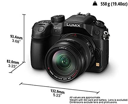 Panasonic Lumix DMC-GH3 (with 12-35mm lens) Digital Camera Image
