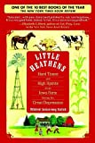 Little Heathens: Hard Times and High Spirits on an Iowa Farm Dur