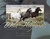 Wild Hoofbeats: America's Vanishing Wild Horses