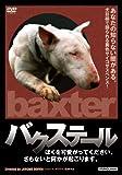 バクステール[DVD]
