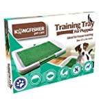 Training Tray for Puppies