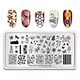 Summer Fruit Nail Art Stamping Template Tropical Punch Pattern Rectangle Image Plate Stamping Polish Needed BP-S-L006 (Color: BP-S-L006)