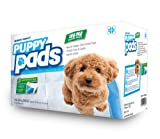 """Mednet Direct 30"""" x 36"""" XX-Large Puppy Pads - 100 Count"""