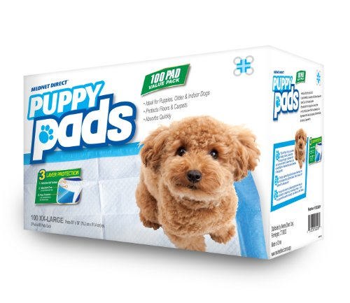 how to pad train your puppy