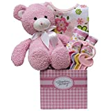 Great Arrivals Baby Gift Basket, Special Delivery Girl