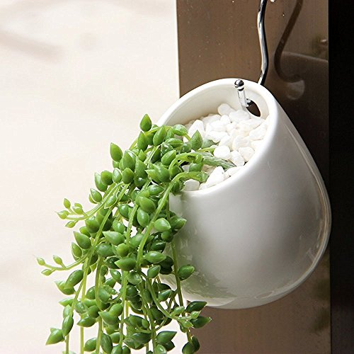 carnosas-maceta-ruimeng-cactus-maceta-mini-redondo-ceramica-pared-hidroponico-planta-pots-white-412-