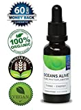 Oceans Alive 2.0 Marine Phytoplankton by Activation Products, 30 ml - Increases Energy and Vitality, Supports Mental Focus, Enhances Immune System. Stored in High Quality Dark Miron-Glass Bottle with High-End Food Dropper for Easy Dispensing - 3rd Party Tested for Superior Purity & Potency. 60 Days Money Back Guarantee.