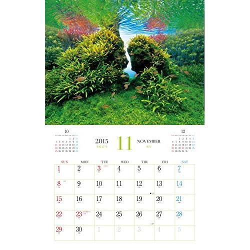 ネイチャーアクアリウム 癒しの水景 (インプレスカレンダー2015)