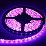 XKTTSUEERCRR Waterproof LED SMD 300LED 5M Flexible Light Strip 12V 2A 24W 60LED/M