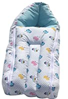 Amardeep and Co sb01-apple Baby Sleeping Bag Cum Baby Carry Bag (Blue)