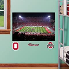 Buy NCAA Ohio State Buckeyes Fathead Junior Stadium Mural Wall Graphic by Fathead