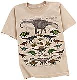 Dinosaur Math Children T-Shirt