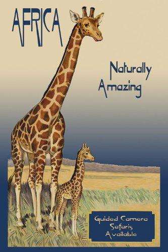 """Africa Naturaly Amazing Mother And Baby Giraffe Safaris 20"""" X 30"""" Image Size Vintage Poster Reproduction. We Have Other Sizes Available front-964655"""