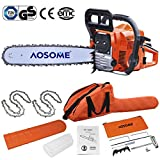 "Popamazing CE&EMC Functional 62cc 20"" Petrol Chainsaw: 2x Saw Chains & Carry Bag Professional Tool"