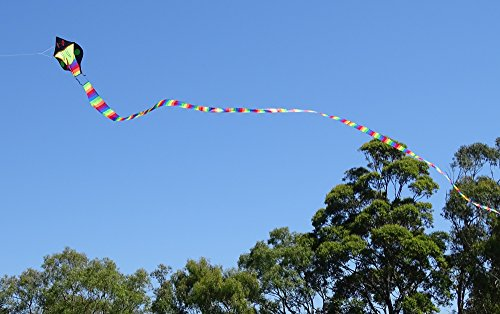 Kite String Lights : Kites for Kids - The King Cobra Kite from The Kite Outlet for Kids 3+ Years and Older ...