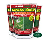 Canada Green Grass Seed: Fast Growing Grass Seed Coverage up to 23.5 Sq Metres