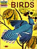 img - for The How and Why Wonder Book of Birds book / textbook / text book