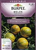 Burpee 51649 Heirloom Melon Vedrantais Seed Packet