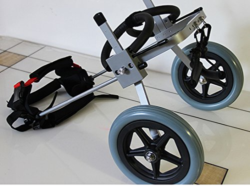 how to make a dog wheelchair for back legs