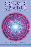 Cosmic Cradle: Spiritual Dimensions of Life Before Birth