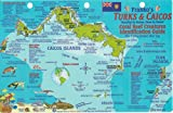 Turks and Caicos Dive Map and Reef Creatures Guide Franko Maps Laminated Fish Card