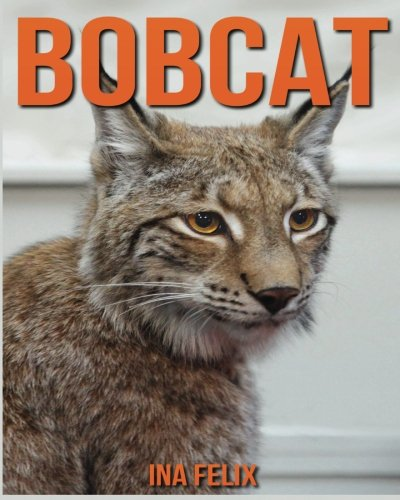 bobcat-children-book-of-fun-facts-amazing-photos-on-animals-in-nature-a-wonderful-bobcat-book-for-ki